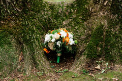 Lush wedding bouquet. Of white and orange chrysanthemums under a tree covered with moss Royalty Free Stock Photography
