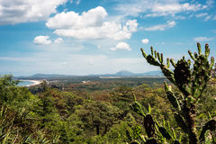 Lussich Botanical Park and the Solana Beach  in Punta del Este Royalty Free Stock Photography
