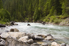 Lussier River in the Rocky Mountains Royalty Free Stock Photography