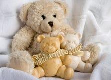 Lustige Bären Lizenzfreie Stockfotos