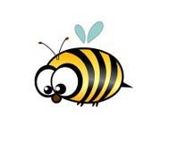 Lustige Biene Lizenzfreies Stockbild