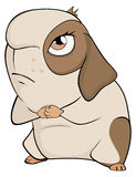 Lustige braune Meerschweinchenkarikatur Stockbild