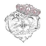 Lustige Eule, die eine Krone trägt Lizenzfreies Stockbild