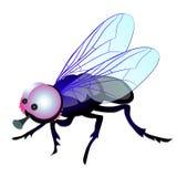 Lustige Fliege mit den großen Augen lokalisiert auf weißem Hintergrund Vektorkarikatur-Nahaufnahmeillustration stock abbildung