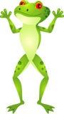 Lustige Froschkarikatur Stockbild