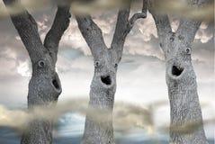 Lustige gespenstische Bäume Stockfotos