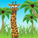 Lustige Giraffe auf Hintergrund der Palmen Stockfoto