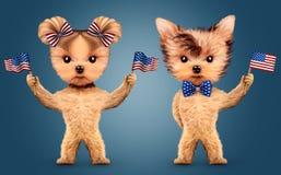Lustige haltene USA-Tierflagge Konzept von Juli 4. Lizenzfreie Stockfotografie
