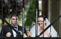 Lustige Hochzeits-Paare lizenzfreie stockfotografie