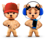 Lustige Hunde, die Musik auf Kopfhörern hören Stockfotos