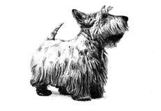 Lustige Hundekunstillustration Stockbild