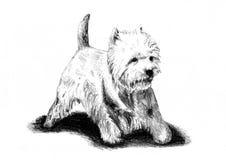 Lustige Hundekunstillustration Lizenzfreie Stockfotos
