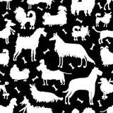 Lustige Hundesammlung, nahtloses Muster für Ihr Design Stockbild