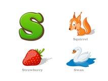 Lustige Ikonen ABC-Buchstaben S Kindereingestellt: Eichhörnchen, Erdbeere, Schwan Stockbilder