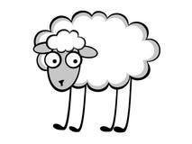 Lustige junge Schafe Stockbilder
