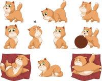Lustige Kätzchen lizenzfreie abbildung