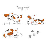 Lustige Karikaturhunde mit einem Knochen Stockbild
