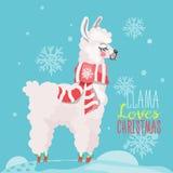 Lustige Karte der frohen Weihnachten mit Lama lizenzfreie stockbilder