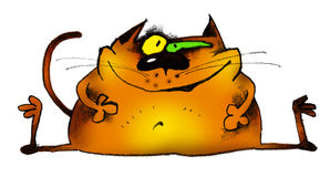 Lustige Katze stock abbildung
