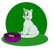 Lustige Katze lizenzfreie abbildung