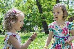 Lustige kleine Mädchen (Schwestern) brennen auf einem Löwenzahn durch lizenzfreies stockfoto