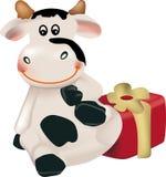 Lustige Kuh mit Geschenk Stockfoto