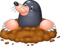 Lustige Mole der Karikatur Lizenzfreies Stockfoto
