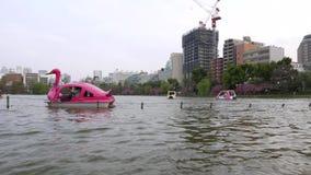 Lustige rosa Schwanboote bei Shinobazu stauen an Ueno-Park, Tokyo stock video footage
