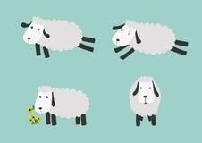 Lustige Schafe mit Farbhintergrund Stockfoto