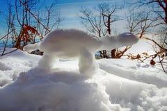 lustige Schneemannschildkröte in den Strahlen der Sonne Stockfotos