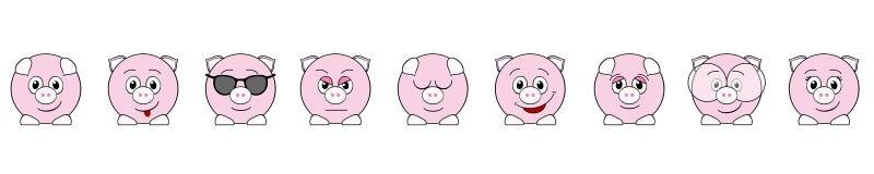Lustige Schweine Stockbild