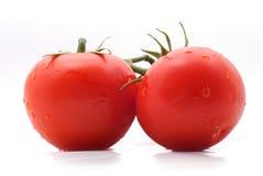 Lustige Tomaten Stockfoto