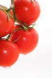 Lustige Tomaten Lizenzfreie Stockbilder