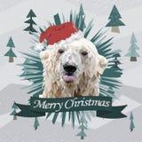 Lustige Weihnachtskarte mit einem polygonalen Porträteisbären, der Zunge im Santa Claus-Hut zeigt Stockfotos
