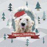 Lustige Weihnachtskarte mit einem polygonalen Porträteisbären, der Zunge im Santa Claus-Hut zeigt Lizenzfreies Stockbild