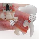 Lustige Zahnheilkunde Lizenzfreie Stockfotos