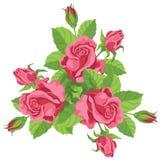 Lustiger Blumenstrauß der Rosen Stockfotos