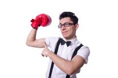 Lustiger Boxer Stockbild