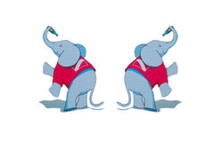 Lustiger Elefant. Lizenzfreie Stockfotos