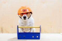 Lustiger Erbauer mit dem Werkzeugkasten, der orange Hardhat trägt Lizenzfreie Stockbilder