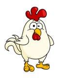 Lustiger fetter kleiner Hahn oder Hahn Stockfoto