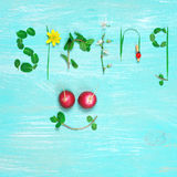 Lustiger Frühlingshintergrund Stockfotografie