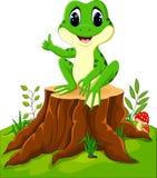 lustiger Frosch der Karikatur Lizenzfreie Stockbilder