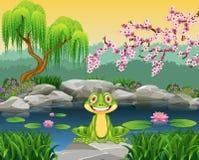 Lustiger Frosch der Karikatur, der auf dem Felsen sitzt Lizenzfreies Stockfoto