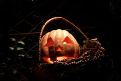 Lustiger Halloween-Kürbis im Korb in der Dunkelheit mit dem g Stockfoto