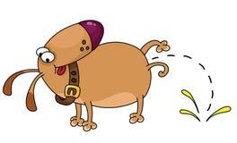 Lustiger Hund Lizenzfreie Stockfotos