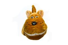 Lustiger Hund Lizenzfreies Stockbild
