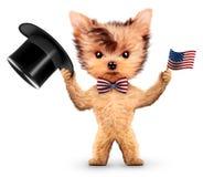 Lustiger Hund, der USA-Flagge hält Konzept von Juli 4. Stockfotografie