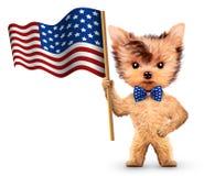 Lustiger Hund, der USA-Flagge hält Konzept von Juli 4. Lizenzfreies Stockfoto