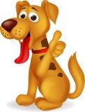 Lustiger Hund mit dem Daumen oben Stockbild